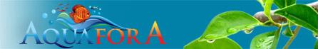 Aquarium forum AquaforA